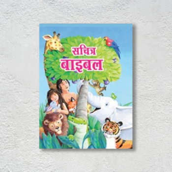 The-Picture-Bible-Hardcover(Hindi)