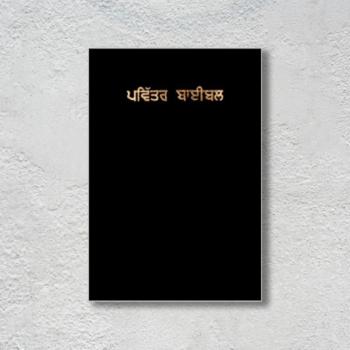 The Holy Bible Punjabi ( With Zip)